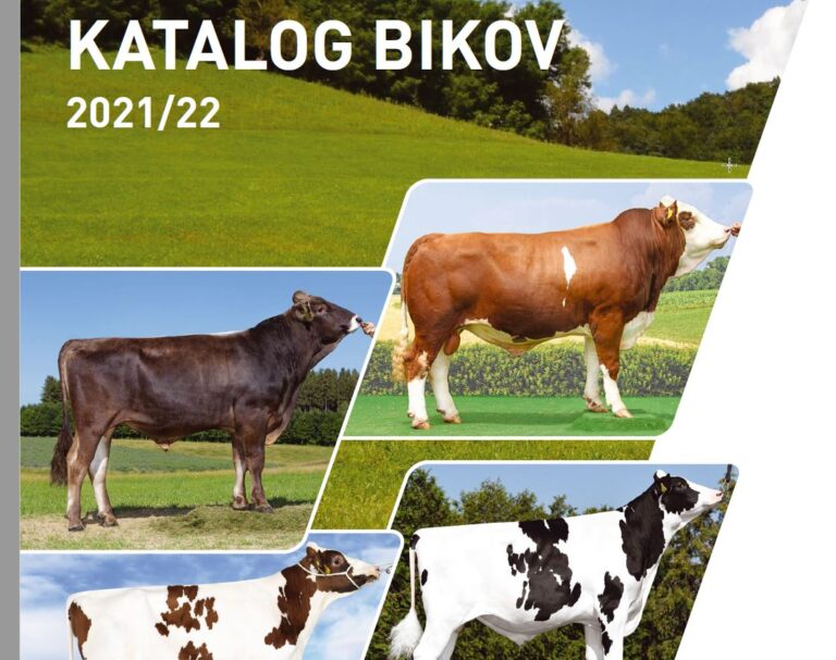 Katalog bikov 2021/22