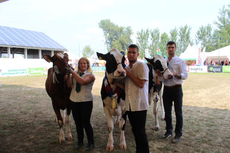 Ocenjevanje živali na Agri 2019